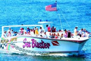 "Original ""Seablaster"" Dolphin and Fireworks Cruises"