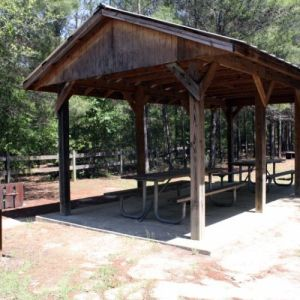 Pine Ridge Equestrian Trail