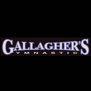 Gallagher's Gymnastics: Parent and Tot Time