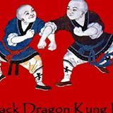 Black Dragon Kung Fu and Taijiquan