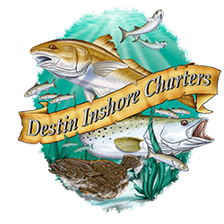 Destin Inshore Charters: Special Kid Fishing Trip and Guided Charters