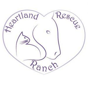 Heartland Rescue Ranch: Horseback Riding Lessons