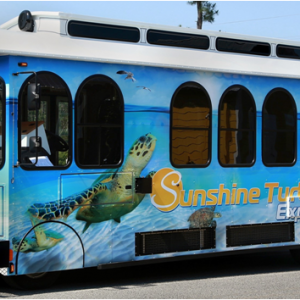 30A Trolley Service