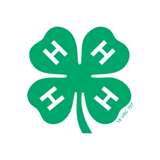 4-H Clubs: Multiple Camp Options
