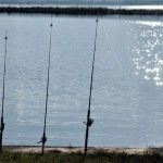 Frank Brown Park: Youth Fishing