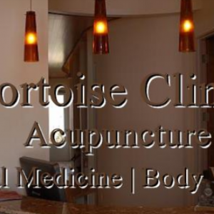 Tortoise Clinic: Acupuncture & Fertility