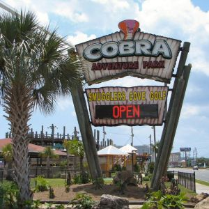 Cobra Skeeball and Batting Cages: Indoor Arcade